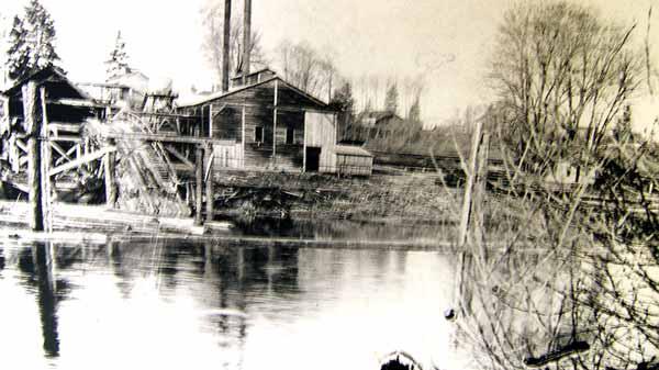 Pidcock-sawmill